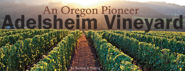 Adelsheim: A Pioneer in the Oregon Wine Industry